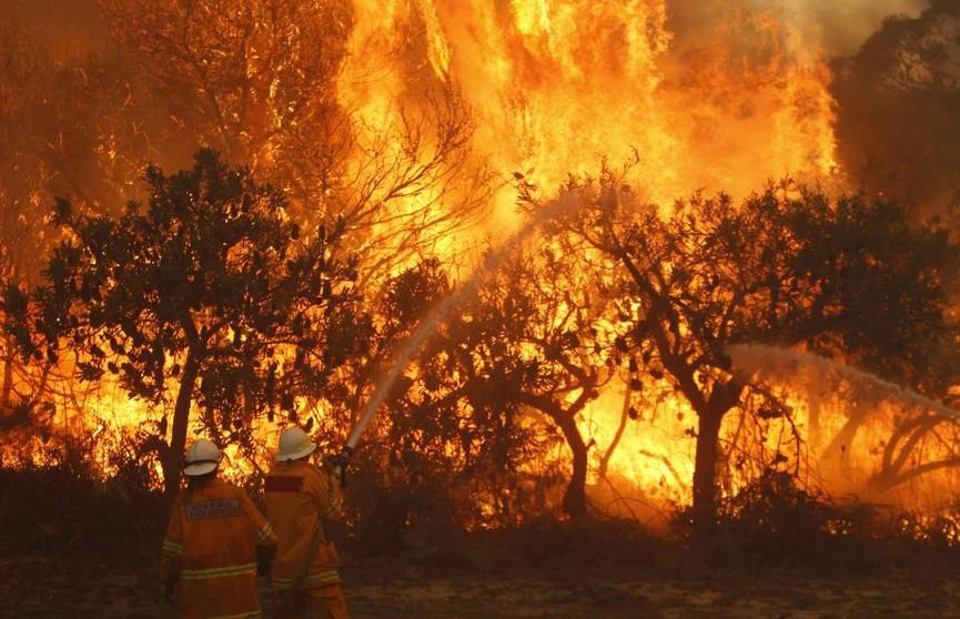 Сезон лесных пожаров начинается в Австралии