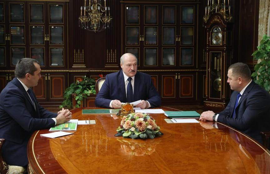 Лукашенко о лесном хозяйстве: Мы восстановили то, что было утрачено в бытность Советского Союза