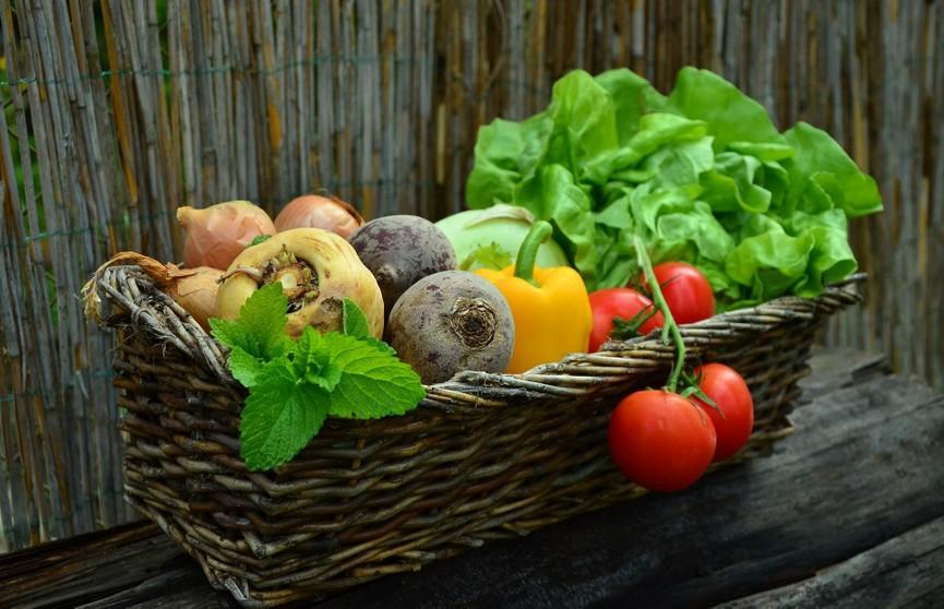 Когда овощи превращаются в яд? Ответила врач-диетолог