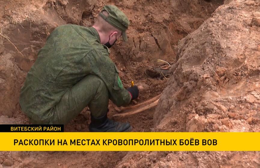 Начались поисковые работы на местах кровопролитных боёв ВОВ в Витебском районе