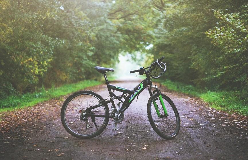 По миру на велосипеде: самые знаменитые велотрассы мира