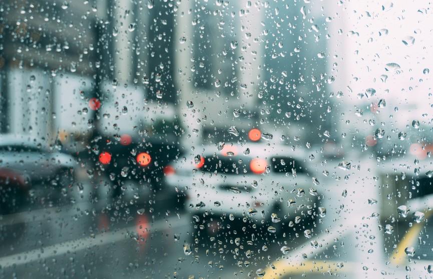 Дожди, грозы и до +21°C: прогноз погоды на 18 мая
