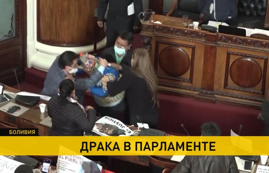 В парламенте Боливии подрались депутаты и сенаторы