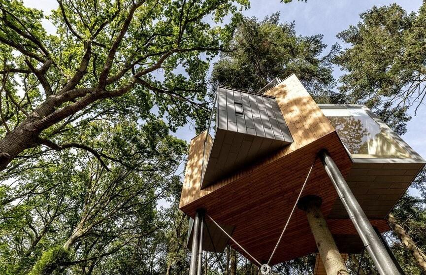 «Высоко живу»: отель на дереве открылся в Дании