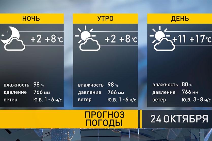 До +20°С и без осадков. Прогноз погоды на 24 октября