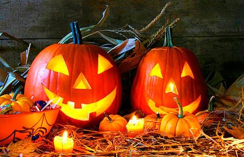 Хэллоуин в кельтском стиле отметят в Ботаническом саду