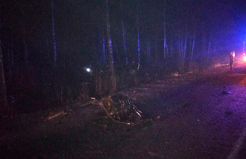 В Солигорском районе автомобиль BMW врезался в дерево: пассажиры погибли, водитель в больнице