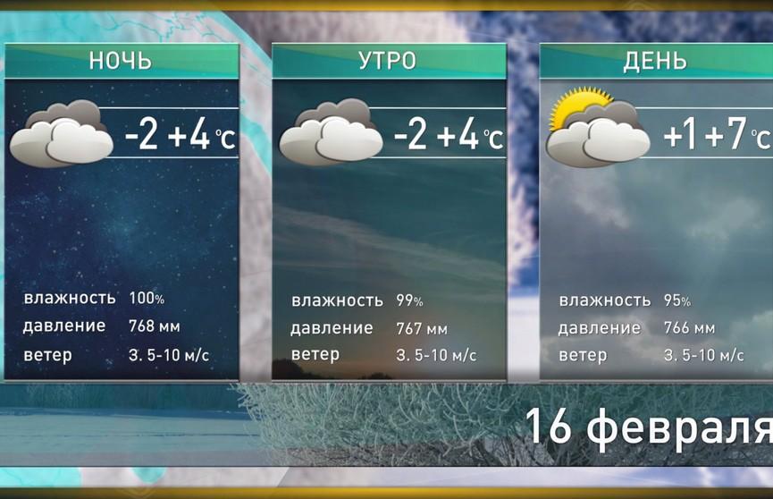 Прогноз погоды на 16 февраля: по юго-западу до +10°С