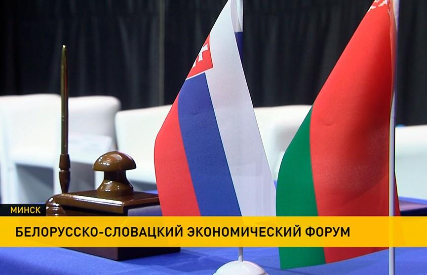 Чем интересна Беларусь словацкому бизнесу? Совместный форум прошел в Минске