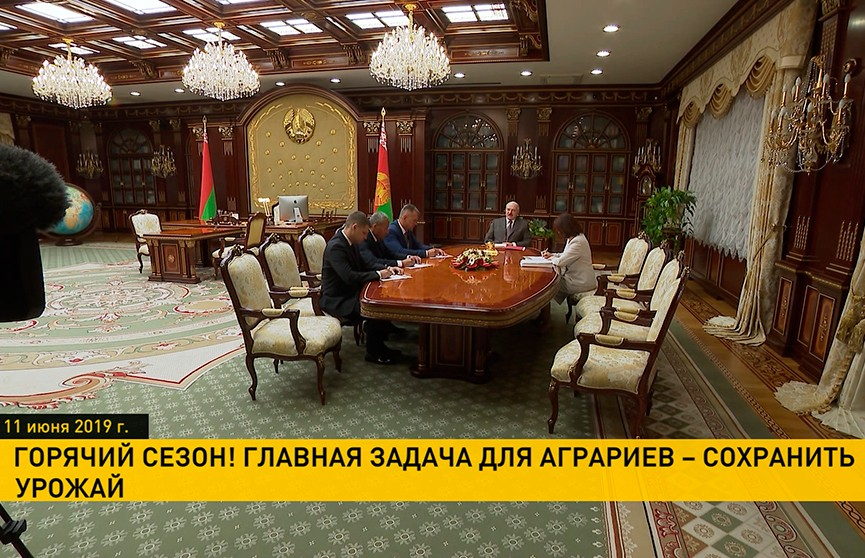 Александр Лукашенко аграриям: Главная задача – сохранить урожай