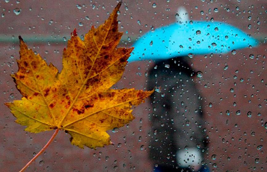 Устала отдыхай, открытки сентябрьский дождь