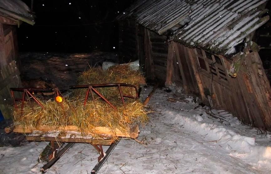 6-летний ребёнок погиб в Мстиславском районе