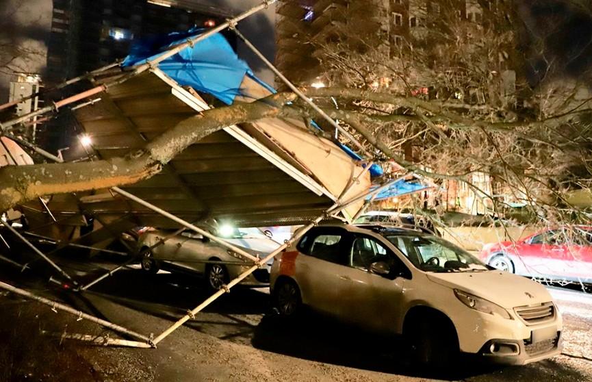 100 тыс. домов остались без света в Швеции из-за непогоды