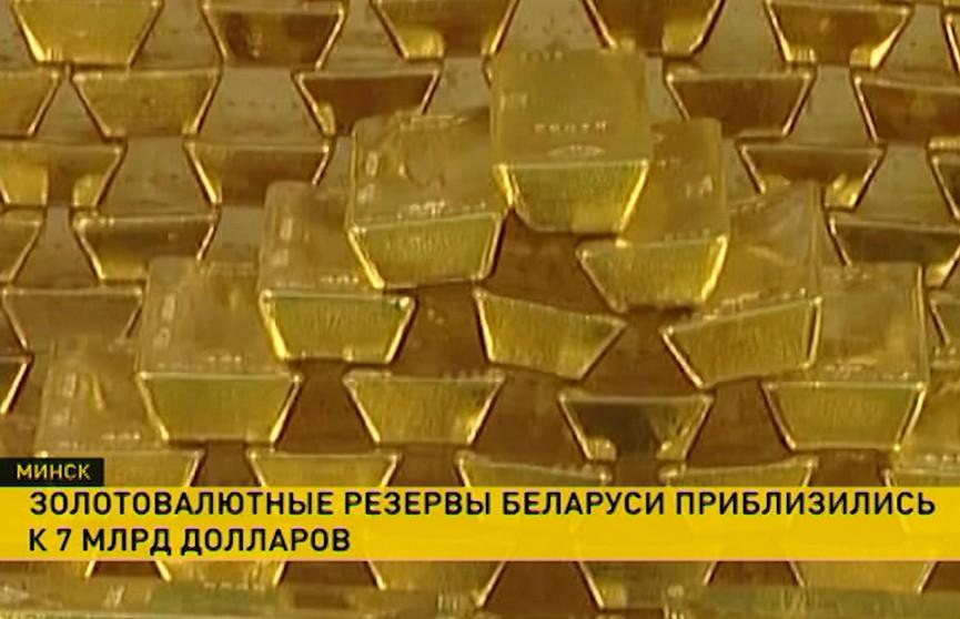 Золотовалютные резервы Беларуси за последний месяц снизились всего на 1,5%