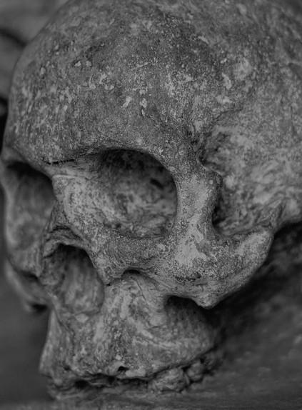 В Китае нашли окаменелые кости черепа древнего человека