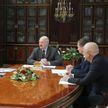 Александр Лукашенко встретился с владельцем компании «Штадлер» Петером Шпулером