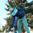 «Мы обязаны восстановить лесной фонд»: более 23 миллионов деревьев высадили во время акции «Неделя леса»