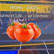 «Будет дополнено»: Закупочные цены на помидоры упали до 30 копеек за килограмм. Что делать в такой ситуации?