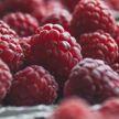 Пять простых продуктов для восстановления кишечника назвали врачи