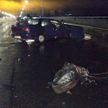 Легковушка врезалась в ограждение моста в Полоцке: понадобилась помощь спасателей