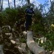 Циклон «Идай»: в результате наводнений и оползней в Мозамбике погибли свыше 440 человек