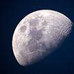 Лунный календарь на неделю с 21 по 27 октября: благоприятные дни для стрижек, работы в саду и огороде