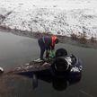 Автомобиль слетел в мелиоративный канал. Водителя спасли