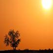Будет ещё жарче: на 11-12 июня в Беларуси объявлен оранжевый уровень опасности