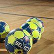 Датчане и испанцы одержали победы на чемпионате мира по гандболу