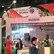 Белорусские предприятия презентовали свою продукцию на выставке в Монголии