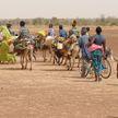 Число мигрантов в мире за последние девять лет выросло на 51 миллион