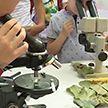 Фестиваль науки проходит в Ботаническом саду в День города