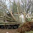 Разрушительный торнадо пронёсся над юго-востоком США. Есть жертвы