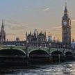 В Лондоне спасли застрявшего в шлюзе кита