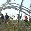 Евросоюз отказался выделять деньги на строительство заборов на границе с Беларусью