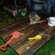 В Бобруйском районе, пока родители обсуждали ремонт, ребенок выпил растворитель