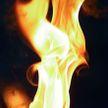 Подростки в Барановичах сожгли ритуальные венки с мемориала на Вечном огне
