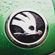 Автомобили Skoda не пройдут таможенное оформление при ввозе в Беларусь