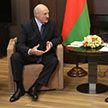 Беларусь-Россия: что обсуждали Александр Лукашенко и Владимир Путин в Сочи?