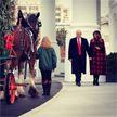 Рождественскую ель привезли в Белый дом