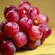 Даже авокадо: 5 полезных продуктов, которые нужно употреблять с осторожностью