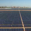 Борьба с глобальным потеплением: Беларусь взяла курс на «зеленую» экономику
