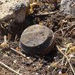 12 детей подорвались на мине в Сирии