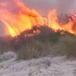 Лесные пожары в Греции: сгорело более 2000 гектаров растительности