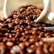 Польза или вред? Нутрициолог развеяла главный миф о кофе