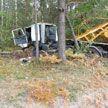 МАЗ съехал в кювет и врезался в дерево в Кобринском районе