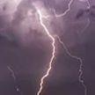 Молния попала в дерево: погибла девушка, четверо молодых людей госпитализированы