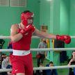 В Минске прошел республиканский турнир по боксу среди юношей и девушек памяти Николая Шеина