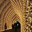 Королевские сады Кью в Лондоне украсили миллионы огней к новогодним праздникам