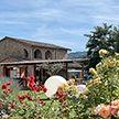 Город в Италии распродаёт дома по €1